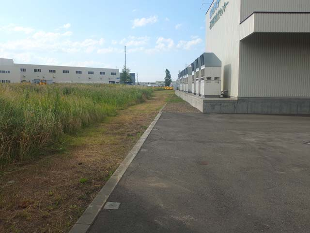 3外周10m、雑草刈取りされてます